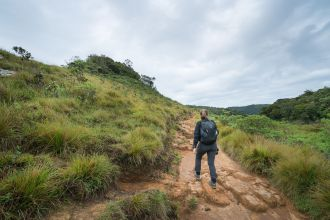 Hiking Horton Plains