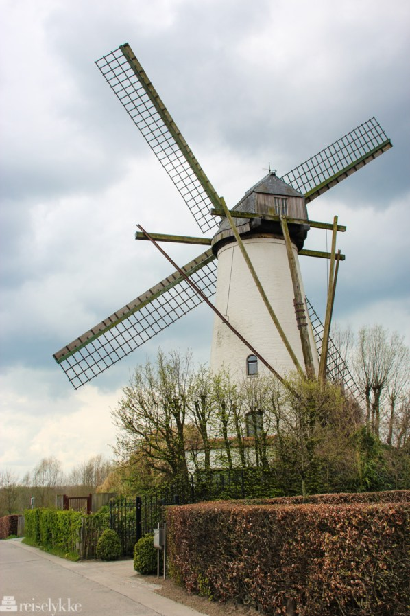 Mølle i Flandern