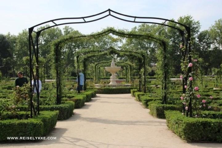 Rosaleda del Retiro: her finnes mer enn 4 000 roser