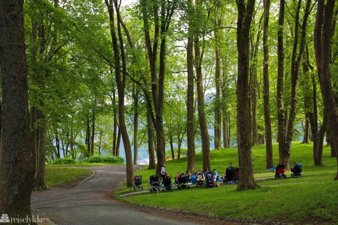Nordnes-parken