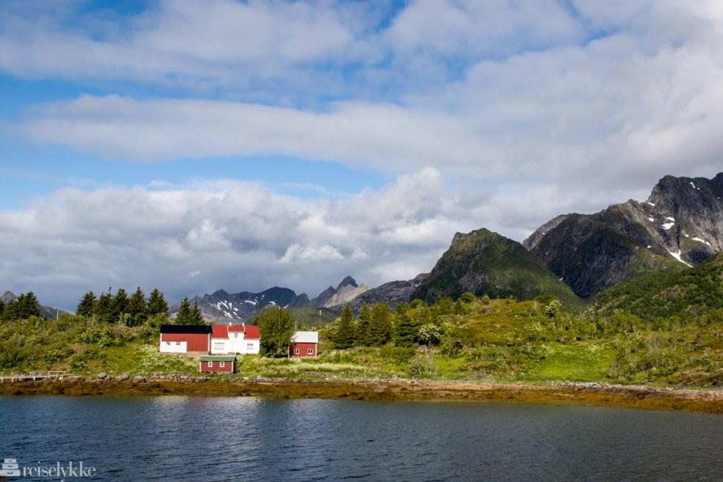 Nyvågar, Lofoten