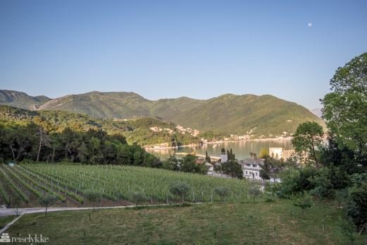 Vinsmaking i Montenegro