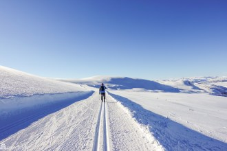 Skiturer over Hardangervidda