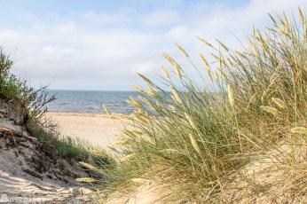 Skrea strand Falkenberg