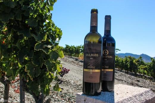 Torres-viner fra Priorat
