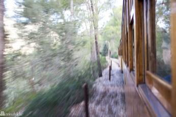 Tren de Soller i farta