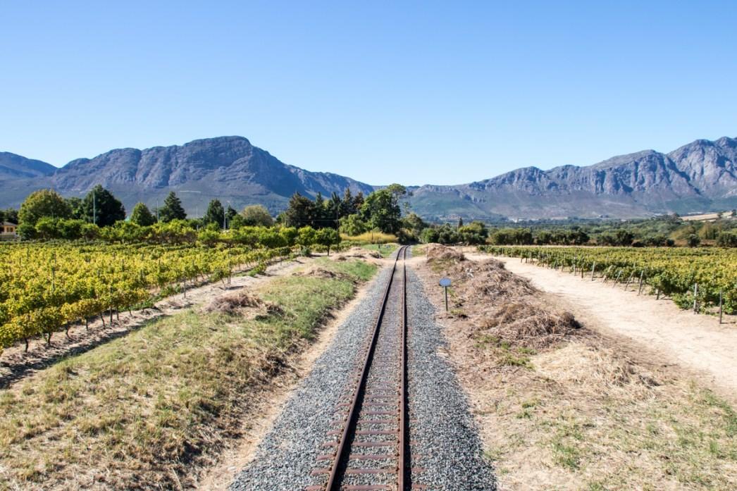 Wine Tram Franschhoek, Sør-Afrika