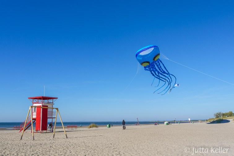 Flugspiele am Strand von Pärnu