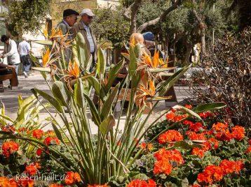 Idyllisch: Die Gartenanlage ist ein beliebter Treffpunkt für Jung und Alt.