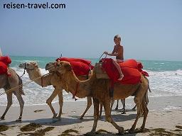 Reisebericht Insel Djerba Tunesien Urlaub