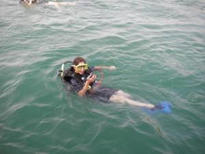 Ein Elafisch im Wasser