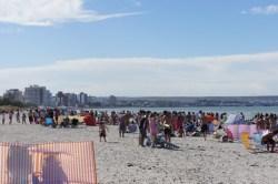 Der Strand von Puerto Madryn (2)