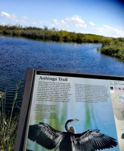 Ahinga Trail in den Everglades