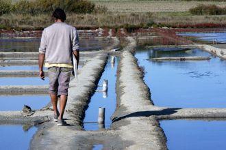 Zu Besuch bei Laurent, einem Salzbauern in Guérande