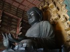 Greatest Vairocana buddha, tallest bronze buddha statue: 450t of bronze to be exact. Finished 749 A.D. by more than 50,000 carpenters and 37,000 blacksmiths. With 16m (30m with base) it towers over the visitors.