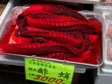 Octopus in Toyko.