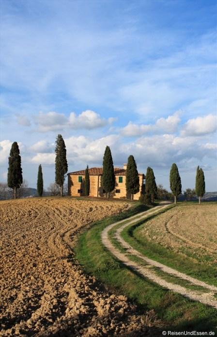 Unterwegs zwischen Montalcino und Pienza