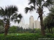 Stadtpark - Shanghai