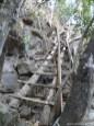 kleine Kletterpartie!