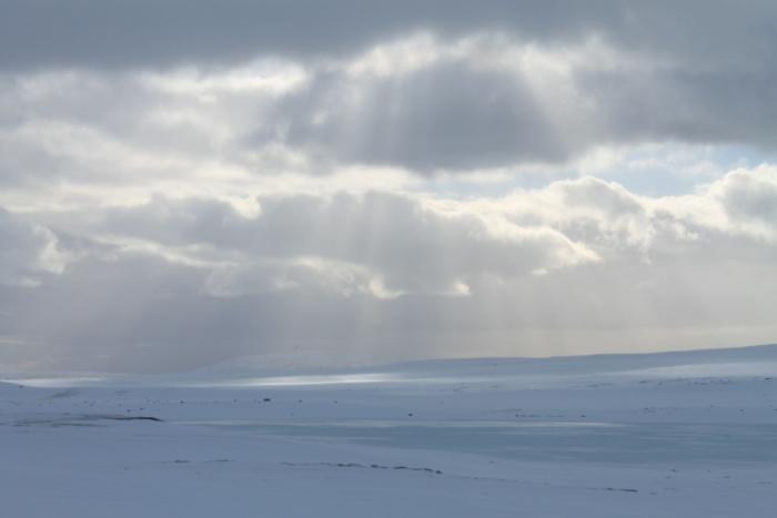 IJslands sneeuwlandschap