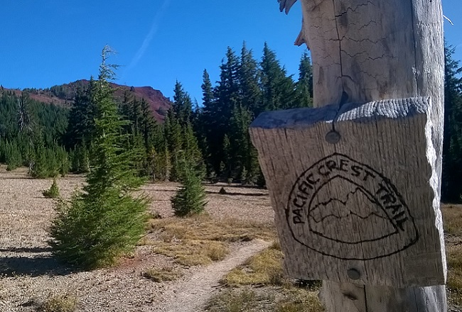 PCT waymark Oregon
