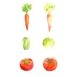 透明水彩で描いた野菜のイラスト にんじん ピーマン レタス トマト イラスト ライフスタイル 料理 野菜 食べ物イラスト アナログイラスト 広告 web  イラストレーター イラストレーション おしゃれ illustration fashionillustration woman illustrator イラストレーターreism・i(リズム)