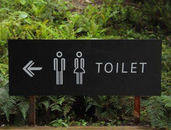 World Toilet Day 2018 – Wenn die Natur ruft!