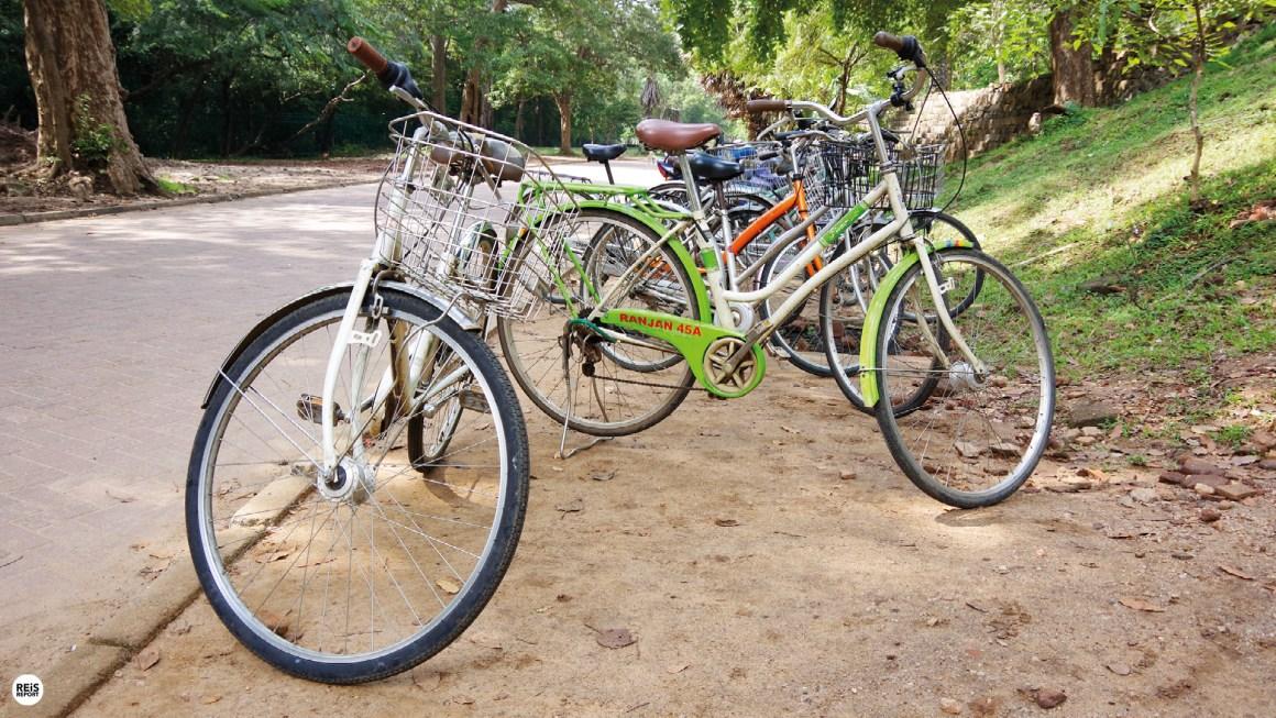 polonnaruwa fiets huren