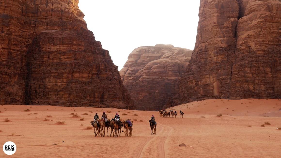 Wadi Rum hotels
