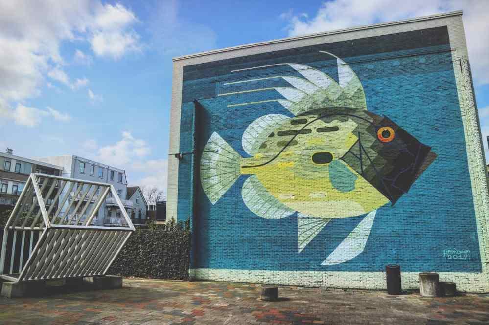 streetart rotterdam noord