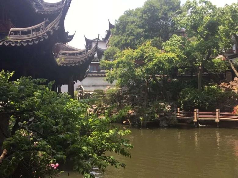 Yu garden shanghai park nature