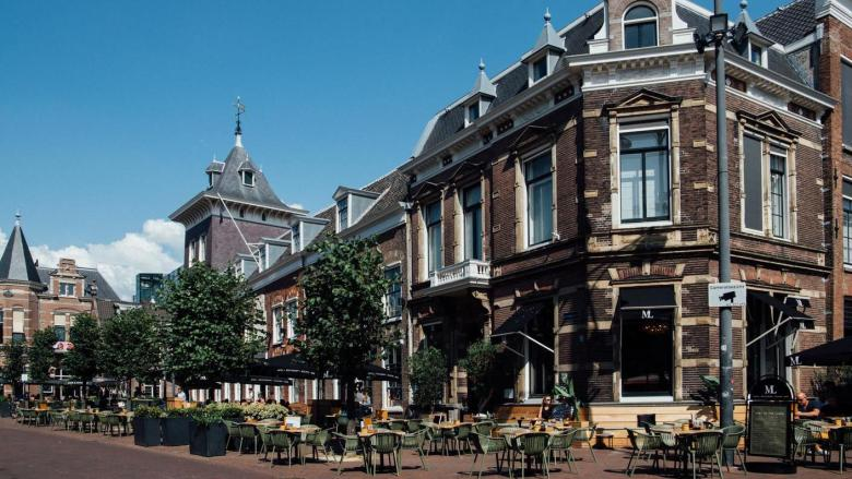 ML terras Haarlem