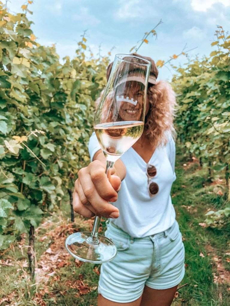 Wijnproeverij Zuid-Limburg
