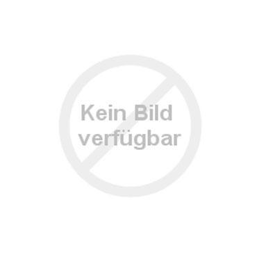 DIE SPIEGELBURG Zauberhaftes Einhorn mit Soundmodul