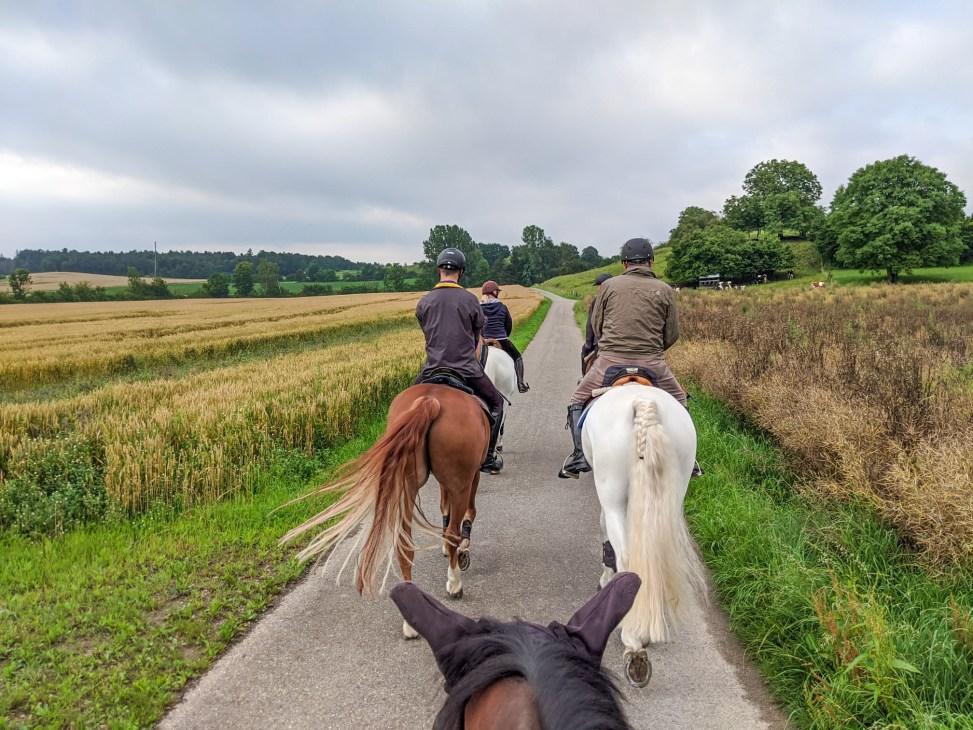Ausritt der Reitergruppe.ch mit Apero