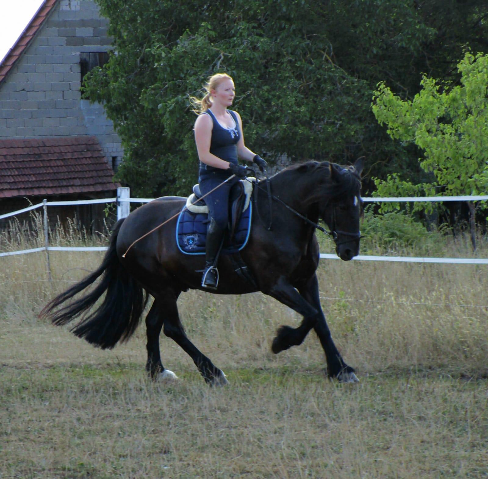Tanja zaubert mir jedes Mal in der Reitstunde ein Lächeln ins Gesicht und meinem Pferd ein zufriedenes Abschnauben. Durch die feinen Hilfen, die sie mir zeigt, kann ich mein Pferd noch besser gymnastizieren. Jede Reitstunde ist eine Empfehlung wert.