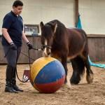 Zirkuskurs mit Heidi Hafen: Felipe und Edwin