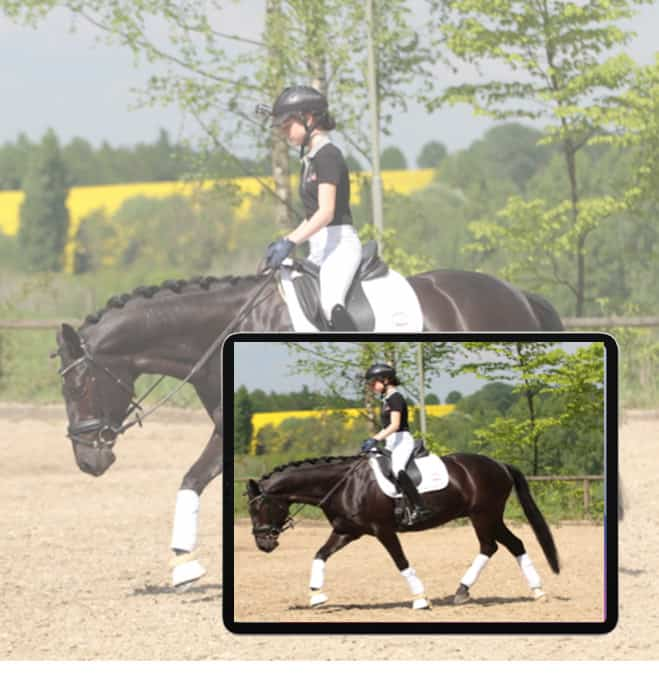 online horse riding lessons