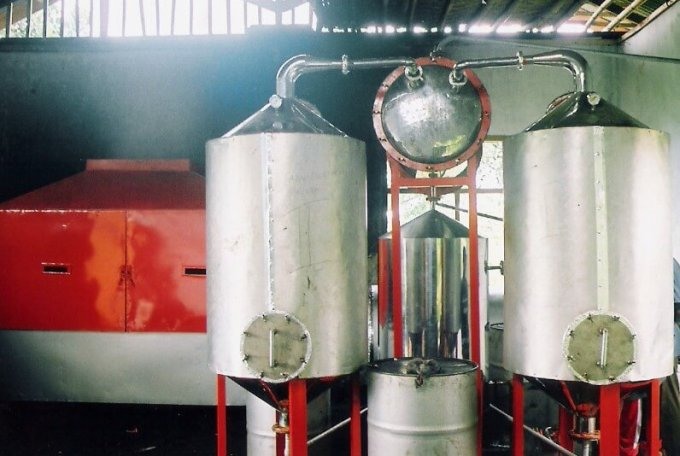 cara membuat minyak nilam