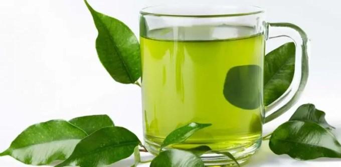 efek samping minum daun sambiloto setiap hari