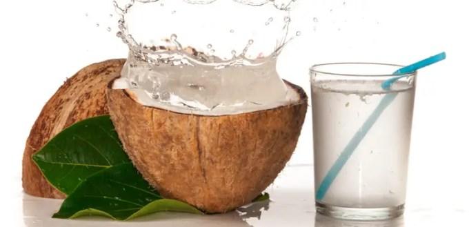 manfaat air kelapa tua