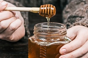 manfaat madu klanceng