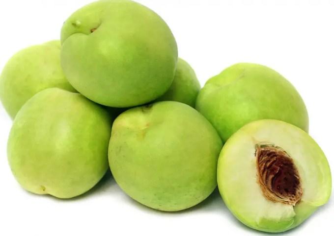 buah plum hijau