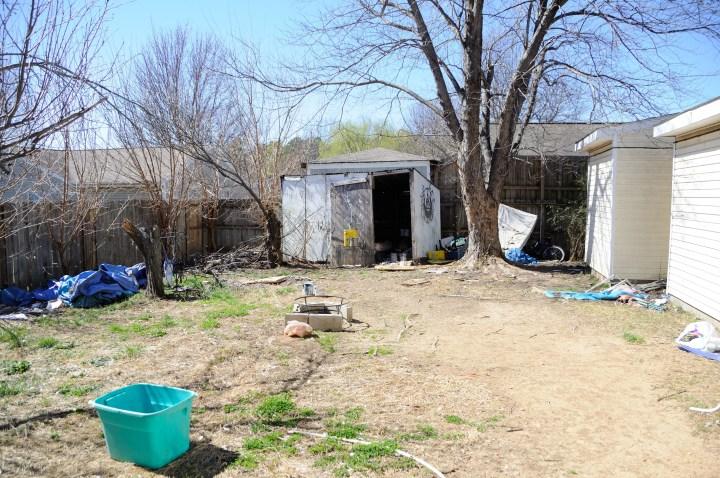 backyard 5 before
