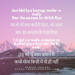 Bewafa Shayari in Hindi for love 3