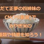 だて正夢の四姉妹のCM(PR動画)でみやぎ米の種類や特徴を知ろう!