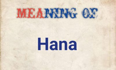 meaning of Hana