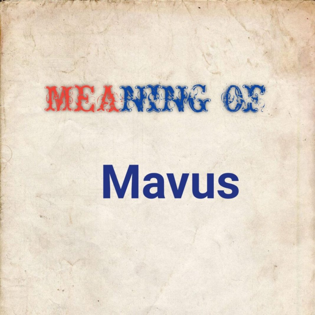 MEANING OF MAVUS