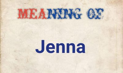 meaning of Jenna