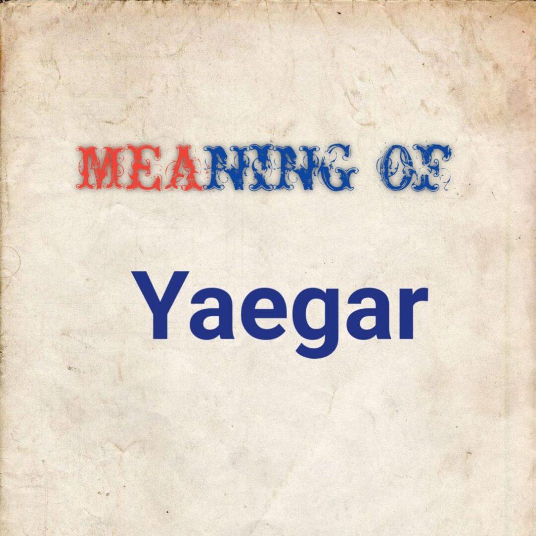 Meaning of yaegar